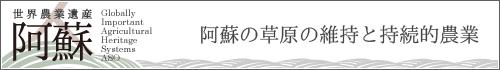 banner_500x70_01
