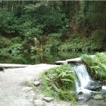 Ikeyama water source