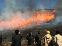 FAOによる現地審査で野焼きの見学風景画像