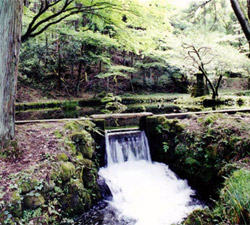 Yamabuki water source