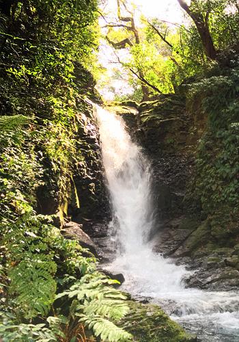 西原村 滝コース