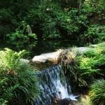 池山水源の画像