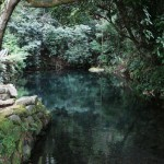 Shioi Corporation water source whom spring was sent back to