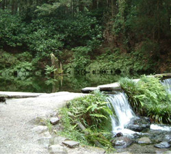 池山水源の写真