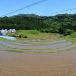 菅山の棚田の画像